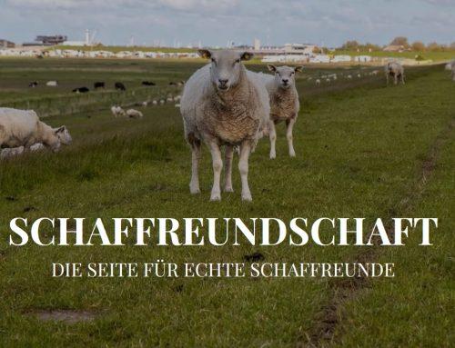 """In Kooperation mit der Tourismus GmbH Dornum, um unsere wichtigsten """"Mitarbeiter"""" zu schützen."""
